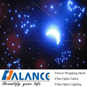 Het Licht van het Plafond van de ster