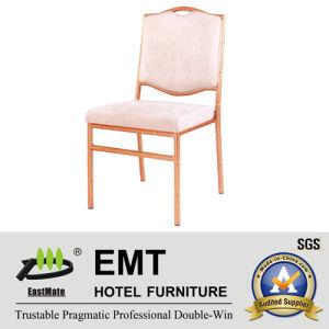 Chaise Suplier (EMT-821) de prix concurrentiel en métal