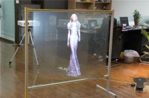 cran de projection olographe de hd avec le tissu transparent cran de projection olographe de. Black Bedroom Furniture Sets. Home Design Ideas
