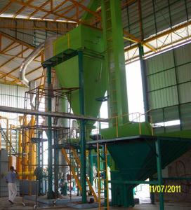 организация сбора и удаления отходов Syetem Biomass Plant 200kw Solid