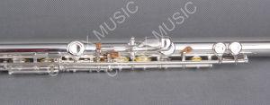 Flute / Nickel Flûte Argent / Flûte Professionnelle 17 Trous (FL17KE-S)