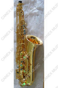 Saxophone de mélodie du Saxophone/C (SAC-G)