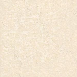 Tuiles Polished de porcelaine - tuiles solubles de sel (E36020)