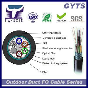 12 de base Blindé monomode câble de fibre optique GYTS