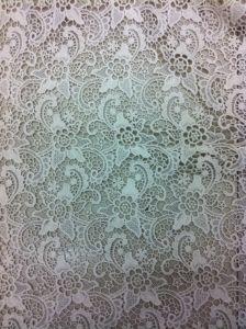 Lacet de crochet de mode (BP-022)