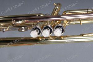 Instruments de musique d'instruments en laiton de trompette