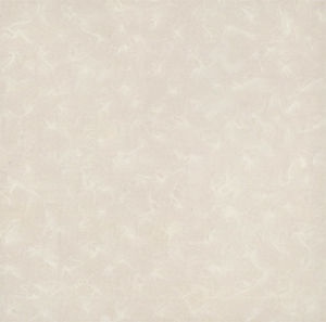 60X60cm, 80X80cm Soluble Salt Nano Polished Porcelain Tiles (E36049)