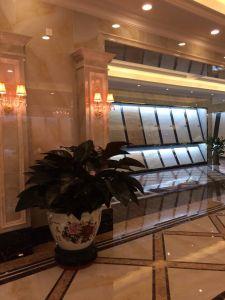 Carrelages Polished complètement vitrés de porcelaine (YD6B361)