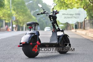 1000W 1500W Big Wheel Citycoco Scooter elétrico Es8004