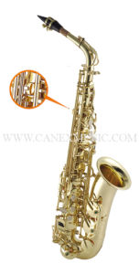 Saxophone d'alto/saxo d'alto/saxophones (SAA400-L)