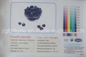 Bandeira 440g 300D*500D/18*12 do cabo flexível do PVC