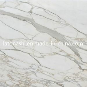 Marbre d 39 or de calacatta carrelage de marbre blanc italien pour la cuisine marbre d 39 or de - Marbre blanc calacatta ...