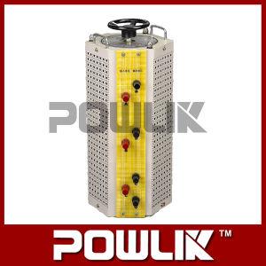 Tdgc \ Tsgc Series Contact Voltage Regulator