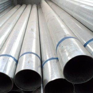 Best Price를 가진 최신 Dipped Galvanized Pipe