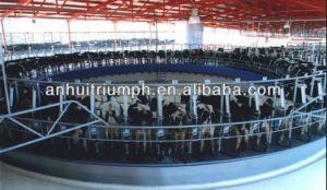 Folha de borracha de EVA da esteira confortável da vaca dos estábulos do cavalo do fabricante de China diretamente