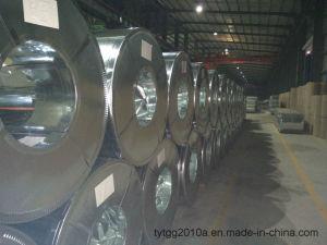 직류 전기를 통한 물결 모양 루핑 강철판