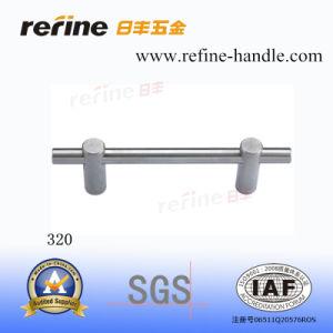 Traitement de trappe d'acier inoxydable (S-320)