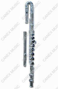 Cannelure d'alto/cannelure argent de nickel (FLAA-S)