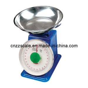 10kg Spring Scale (ZZDP-201)