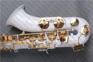 Saxophone de teneur/saxo de teneur/saxophone de couleur (SAT-C)