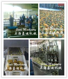 Linha de produção completa para abacaxi em conserva
