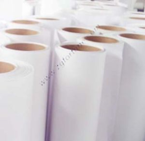 PP impermeáveis 210g lustroso de papel (WP-210G)