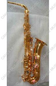 C Saxophone de mélodie / qualité populaire (SAC-L)