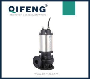 الفولاذ المقاوم للصدأ موتور الإسكان الصرف الصحي مضخة (WQ)