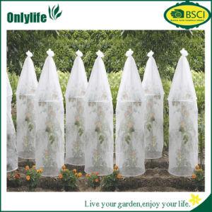 Couverture de l 39 hiver de protection des plantes de gel d for Couverture plante hiver