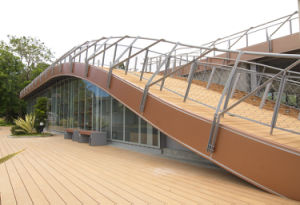 Revestimento composto plástico de madeira de Ocox (HO02515)
