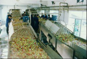 Terminar a linha de produção para o sumo de maçã do concentrado