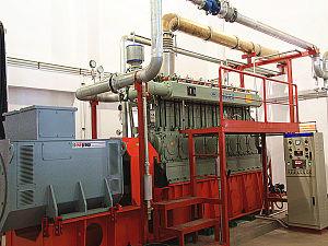 Renewable Energy Large Power 600kw Biogas Generator Set