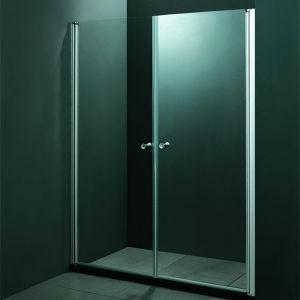 Hete Verkoop 2 de Schuifdeuren Aangemaakte Deur van de Douche van het Glas (SR9D015)