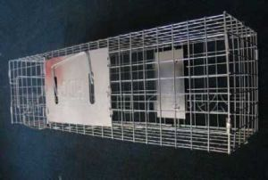 Cage de pi ge cureuil galvanis cage de chat lapin chien animal cage de pi ge - Kooi trap ...