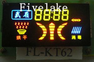 Colorful fait sur commande DEL Segment Display pour Electric Appliance (KT62)