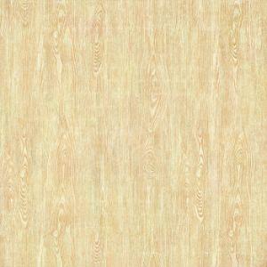 Taille en bois de carrelages de porcelaine dans 60X60cm Fb01