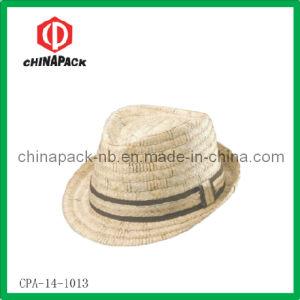 Cappelli del Trilby di modo (CPA-14-1013)