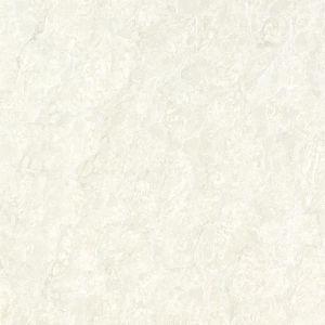 Tuiles Polished nobles neuves lustrées superbes de porcelaine (E36N15)