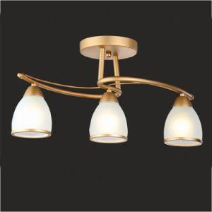 La lampe de plafond de lustre s 39 allume vers le bas la - Comment accrocher une lampe au plafond ...