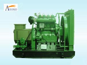 Возобновляющая энергия Small Power 30kw Biogas Generator Set