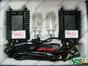 HID Lamp Xenon Bulb 75W 24V 12V