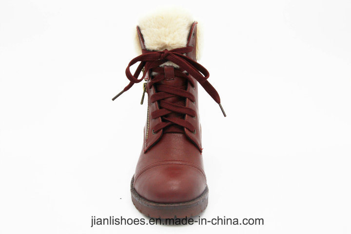 2018 Aw Most Popular Fashionable Safety Soft Fur Wool Winter Boots for Women (AB624)