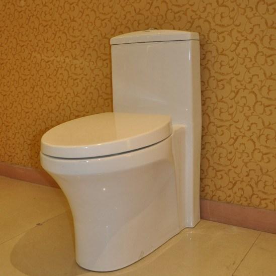 toilette d 39 une seule pi ce de salle de bains cb 9079 toilette d 39 une seule pi ce de salle de. Black Bedroom Furniture Sets. Home Design Ideas