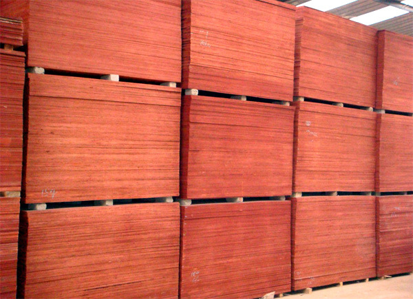 China black brownfilm faced waterproof shutter concrete