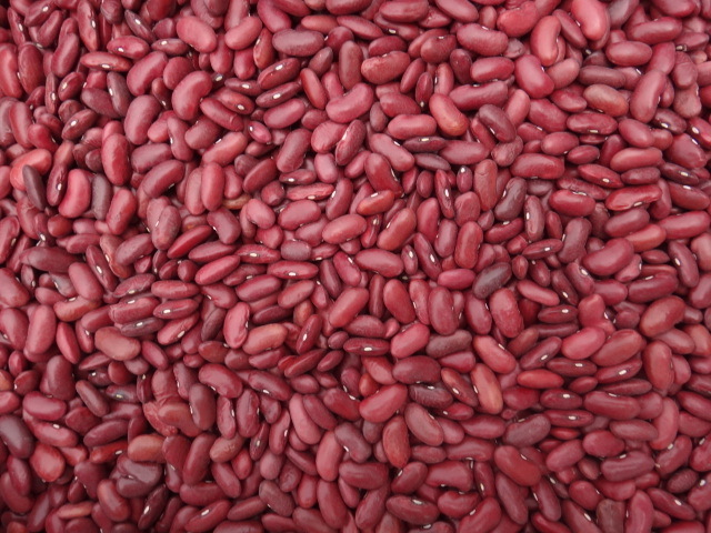 New Crop Dark Red Kidney Beans