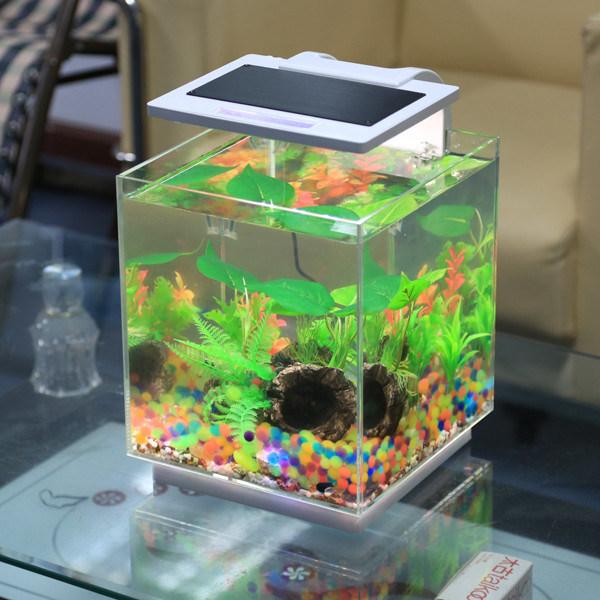 Nouveau r servoir de poissons acrylique nano view mini for Mini poisson aquarium