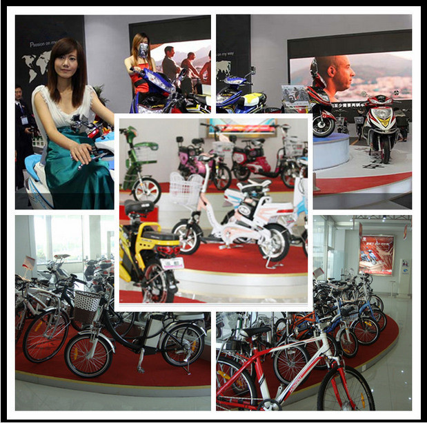 China 2016 newest and hot sale best electric bicycle for Best electric bike motor