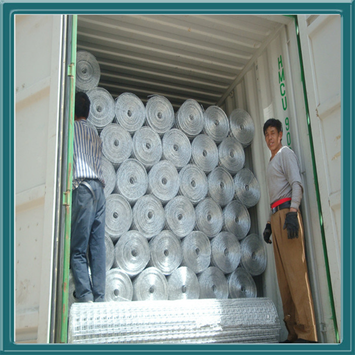 Gore Van Welded Wire Mesh