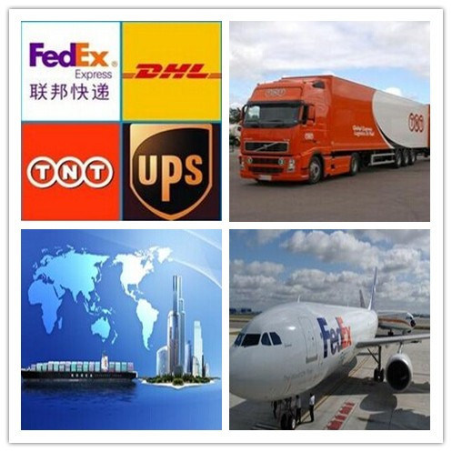 dhl research paper