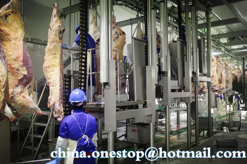 cow slaughterhouse machine